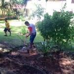Реабилитация в Бразилии